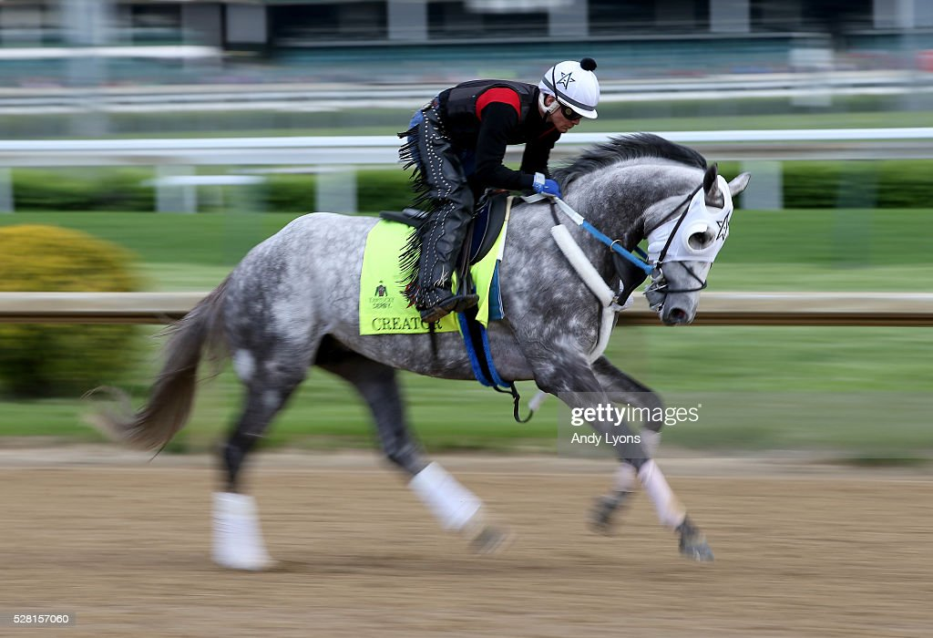 Creator runs on the track during the morning training for the 2016 Kentucky Derby at Churchill Downs on May 04, 2016 in Louisville, Kentucky.