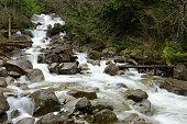 Creek at Shannon Falls Provincial Park, British Columbia, Canada