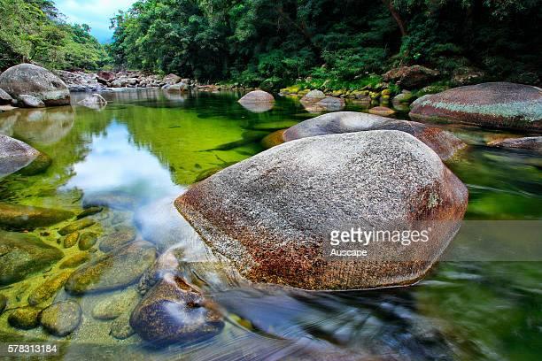 Creek flowing through tropical rainforest in Mossman Gorge Daintree National Park Queensland Australia