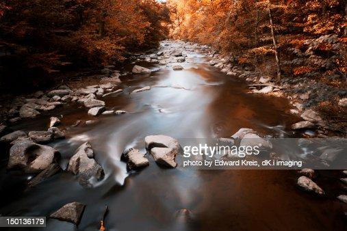 Creek : Stock Photo