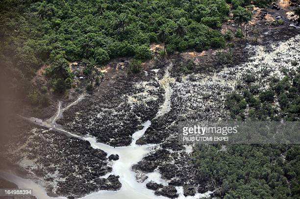 Creeks devastated as a result of spills from oil theives at Nembe Creek in Niger Delta on March 22 2013 Shell Petroleum Development Company of...