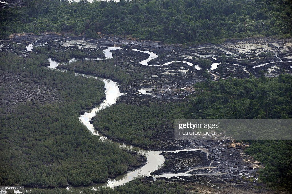 Creeks devastated as a result of spills from oil theives at Nembe Creek in Niger Delta on March 22, 2013. Shell Petroleum Development Company of Nigeria (SPDC) has threatened to shut down production in April for nine days in the entire Nembe Creek Truck Line (NCTL) to remove a number of bunkering points on pipelines vandalised by oil thieves in the region. 'Whenever we observe a spill, or have a spill on our lines, we shut down production to depressurize and isolate the line, only then can we safely repare our lines because it is then safe to manipulate the line', said Jurgen Jonzen, SPDC corporate pipeline asset manager. Last year, 157 bunkering points were removed and 116 were leaking on the whole SPDC exploitation. Since 2009, SPDC has exprienced an upsurge in vandalisation of pipeline network by criminals causing severe environmental devastation of the region and forcing the company to lose 60 000 barrels daily this year. AFP PHOTO / PIUS UTOMI EKPEI