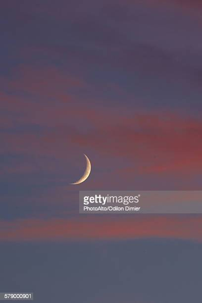 Crescent moon and pink clouds in twilight sky