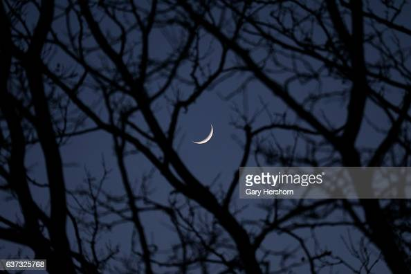 A crescent moon sets behind trees in Liberty State Park on January 1 2017 in Jersey City NJ