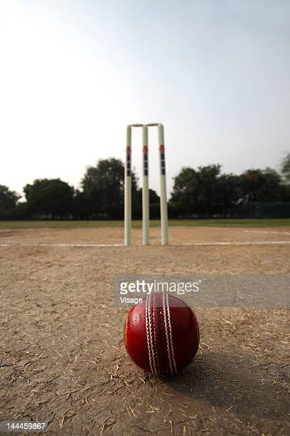 Cricke ball aand wickets on a pitch