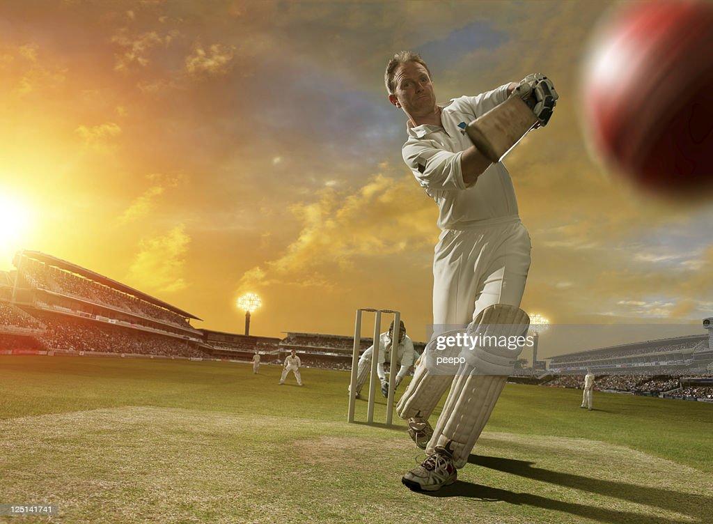 cricket action : Stock Photo