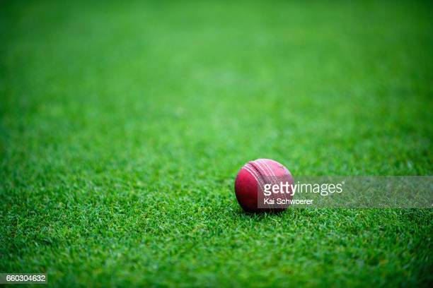 Cricket ball is seen lying on the pitch as mist and a wet outfield delay play during the Plunket Shield match between Canterbury and Wellington on...