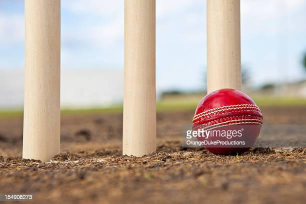 Cricket ball next to wickets on pitch