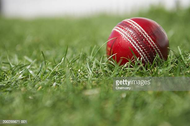 Cricket ball on grass, ground view, close-up