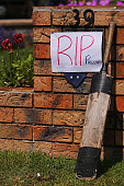 A cricket bat is rested on a letter box in tribute to Phillip Hughes on December 2 2014 in Macksville Australia Cricket player Phillip Hughes passed...