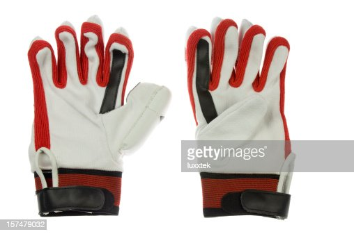 Cricket batter gloves
