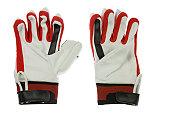 Cricket batter gloves