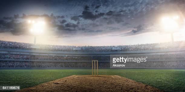 Cricket: Estadio Cricket