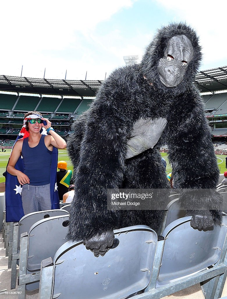 Cricket fan Tom Hall turns up as a Gorilla for the dress up during game five of the Commonwealth Bank International Series between Australia and the West Indies at Melbourne Cricket Ground on February 10, 2013 in Melbourne, Australia.