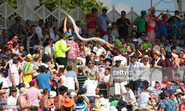 Cricket fans make a snake with plastic beer glasses during day four of the First Investec Ashes Test match at Trent Bridge Nottingham