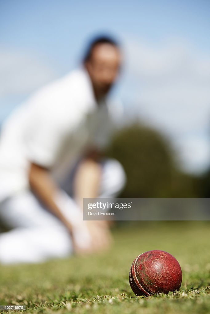 Cricket Fielder : Stock Photo