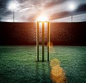Cricket pitch/wickets in stadium