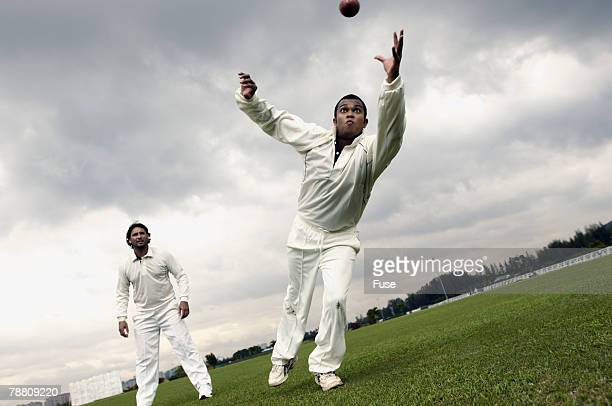 Cricket Player Diving for Ball