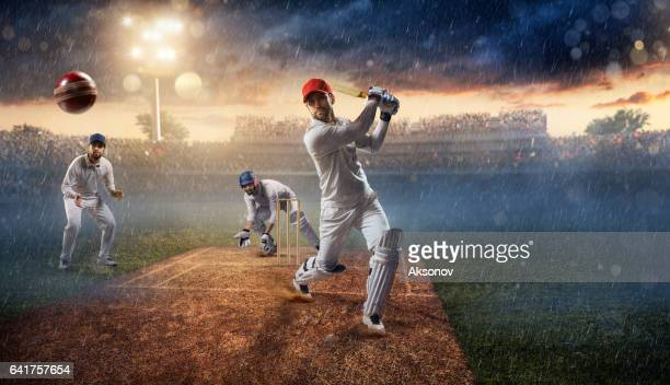 Cricket: The game moment
