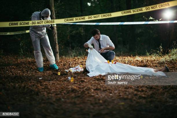 Crime and Investigation