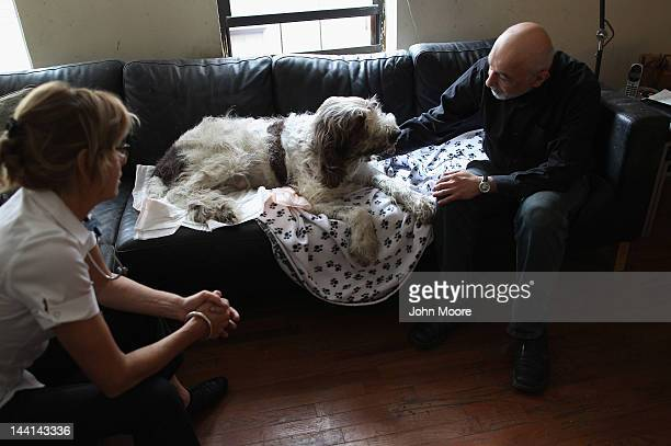 Cris Cristofaro a New York City artist spends a few final moments with his 12yearold Italian Spinone Dino as veteranarian Wendy McCulloch prepares to...