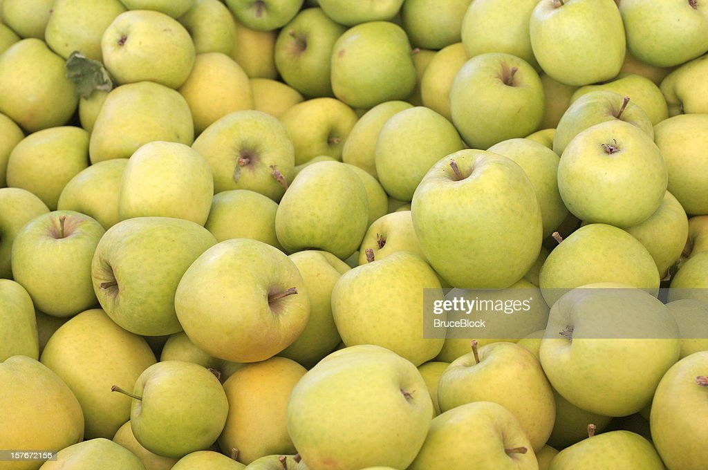 Crispin (also known as Mutsu) apples : Stock Photo