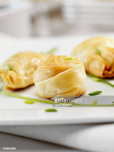 Crispy Stuffed Phyllo Pastry Appetizers