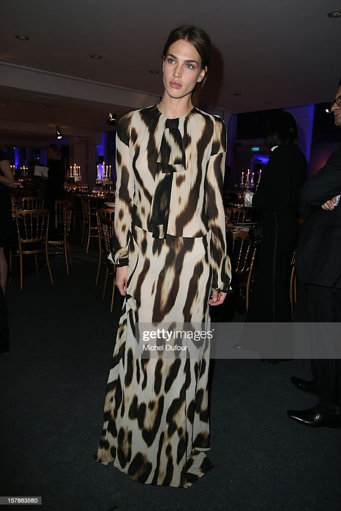 Crista Cober attends the Babeth Djian Hosts Dinner For Rwanda To The Benefit Of A.E.M. on December 6, 2012 in Paris, France.