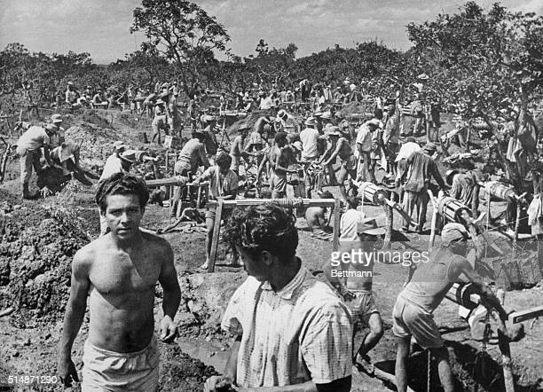 3/11/65 Cristalina Brazil 'A small army of treasurehunters digs for quartz and topaz in the wilderness of Brazil's Goias State on the 500000...