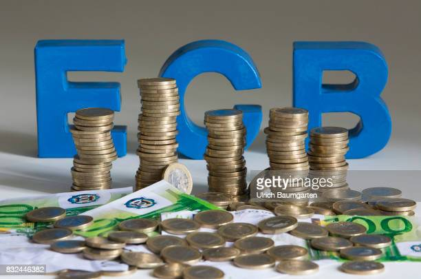 Criticism of the monetary policy of the European Central Bank Review of ECB bond purchases by the Constitutional Court The photo shows one Euro coins...