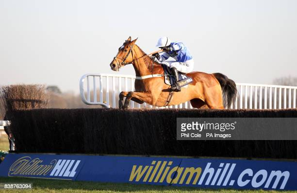 Croan Rock ridden by jockey Dougie Costello in action during the williamhillcom Novices' Handicap Chase