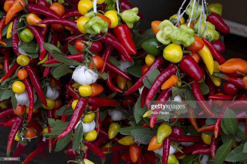 Croatia, Istria, Rovinj, peppers