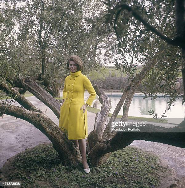 Croatian actress Sylva Koscina posing under an olive tree wearing a yellow coat 1964