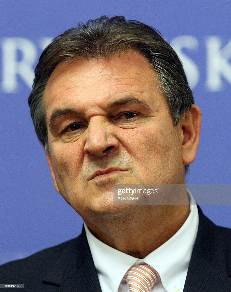 Croatian Deputy Prime Minister and Economy Minister Radimir Cacic grimaces as he addresses the press at the government building in Zagreb, on November 14, 2012. Cacic, a key architect of crucial reforms needed for the country's EU entry in 2013, resigned today after a court in Hungary sentenced him to 22 months in prison for his involvement in a 2010 car accident that killed two people. AFP PHOTO/Stringer