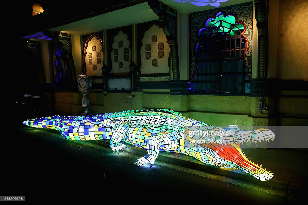 A crocodile light sculpture is seen during a media preview of Vivid Sydney illuminated displays at Taronga Zoo on May 24, 2016 in Sydney, Australia. Vivid is lighting up at Taronga Zoo for the first time with ten giant animal sculptures representing critical species the zoo is committed to protecting. Held annually, Vivid Sydney is the world's largest festival of light, music and ideas running for 23 days.