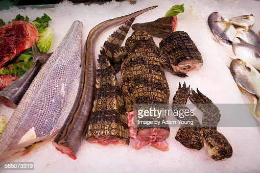 Crocodile meat on sale in guangzhou supermarket stock for Cuisine a crocs
