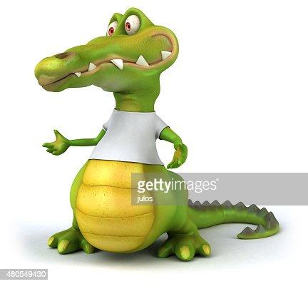 Crocodile : Stock Photo