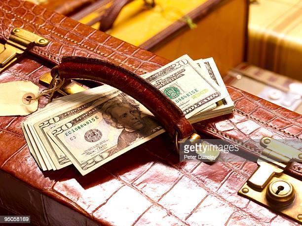 crocodile skin suitcase with US dollars