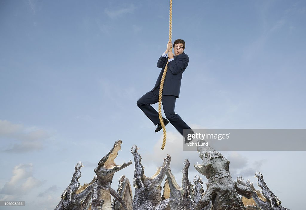 Crocodiles at the end of your rope : Stock Photo