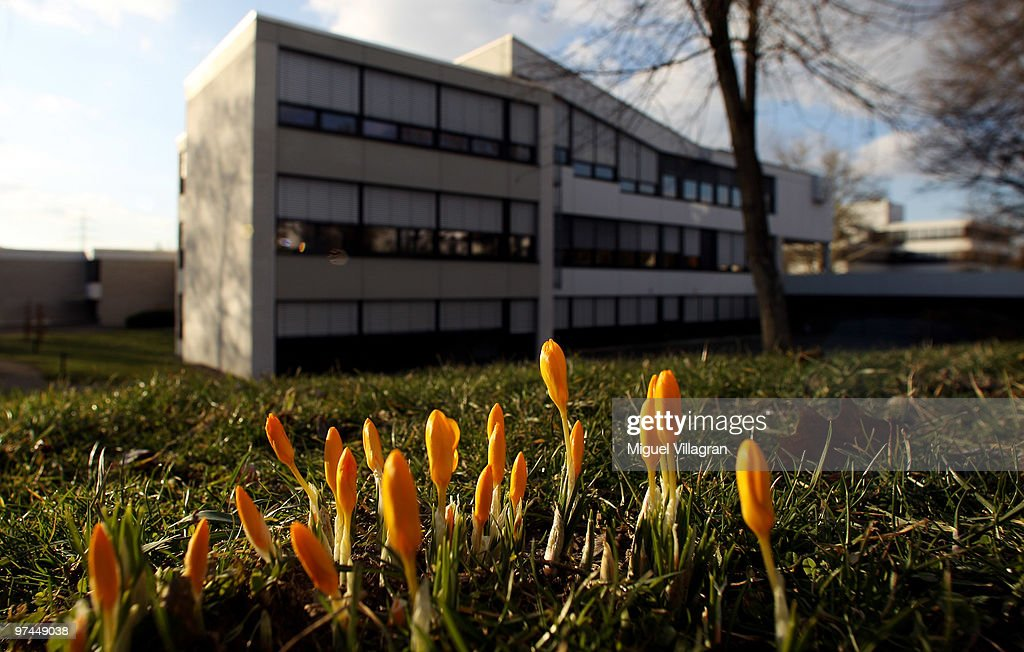 Crocuses flourish in front of the Albertville School on March 4 2010 in Winnenden Germany Tim Kretschmer opened fire on teachers and pupils at his...