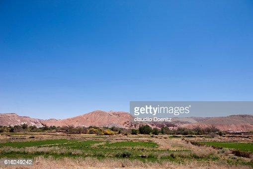 Cropland in San Pedro de Atacama : Foto de stock