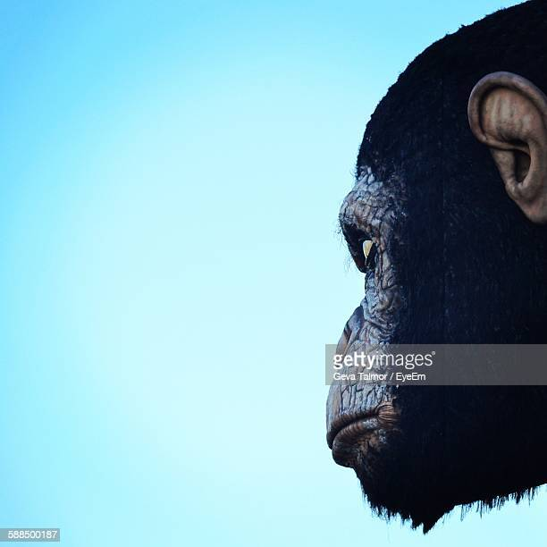 Cropped Artificial Monkey Black Against Clear Sky