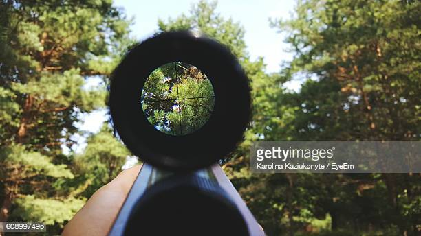 Cropped Hand Holding Rifle In Forest