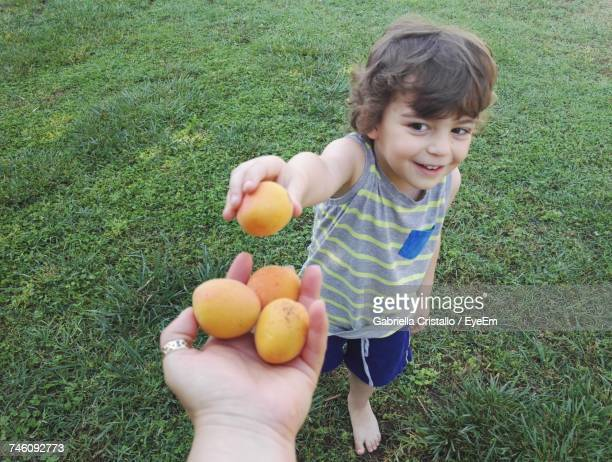 Cropped Hand Of Mother Offering Apricot Fruits To Son On Grassy Field