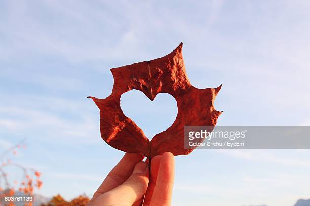 Cropped Hand Of Person Holding Heart Shape Made On Autumn Leaf
