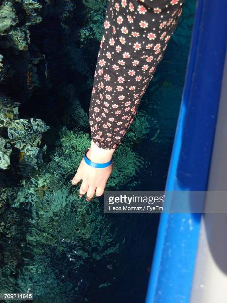 Cropped Hand Of Woman Touching Coral In Sea