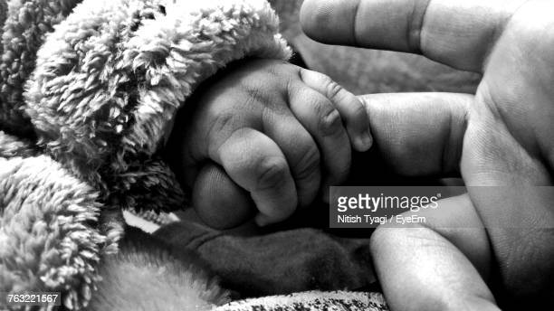 Cropped Image Of Baby Holding Parent Finger