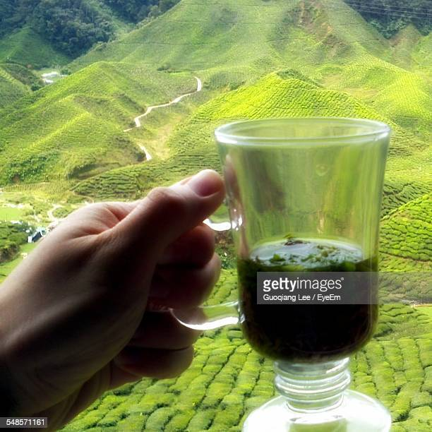 Cropped Image Of Hand Holding Tea Cup Against Farm