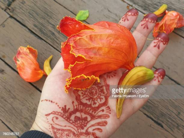 Cropped Image Of Hand With Henna Tattoo Holding Red Flower