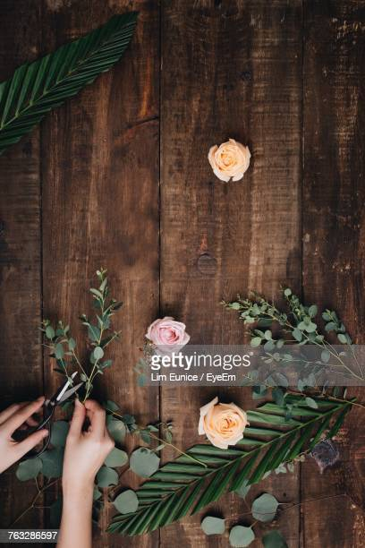 Cropped Image Of Hands Cutting Flowers On Wooden Table